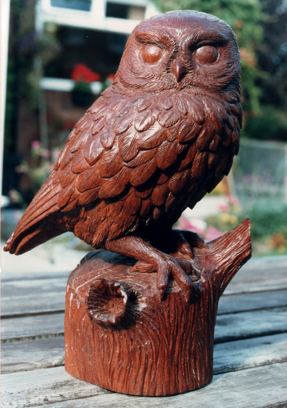 Little Owl In Mahogany - wooden owl, brown owl, wood carved owl, bees wax