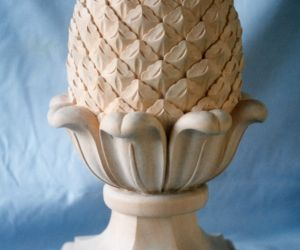 Ornamental Pineapple 2