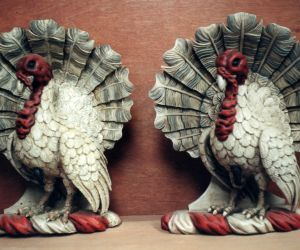 Reproduction Turkey